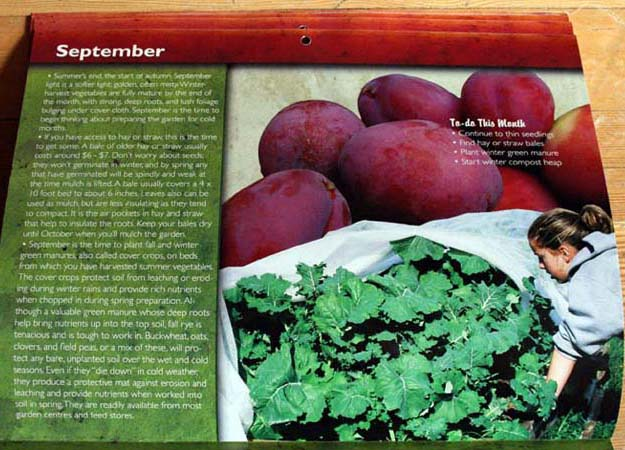 winter harvest vegetables calendar 2010