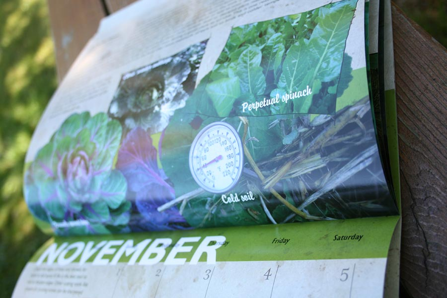 winter harvest vegetables calendar 2011