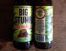 Illustration for Dead Frog Brewery's Big Stump Spruce Golden Ale