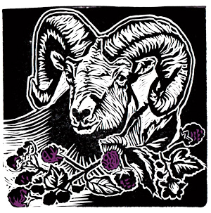Linocut and label design for deVine Spirits Black Ram