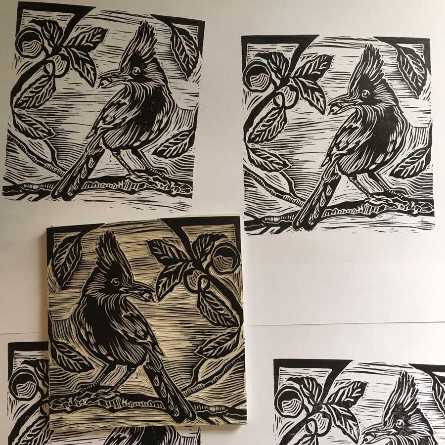 Linocut block print of the Steller's Jay for Sloe Gin